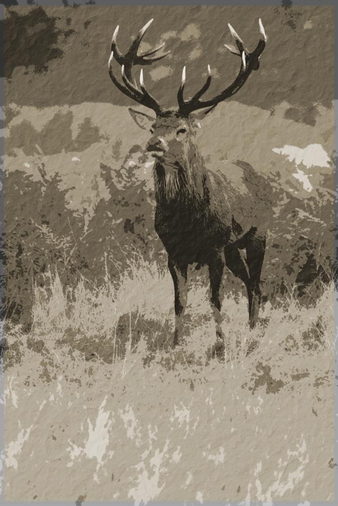 BushyPark_-8651 brown
