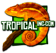 tropical_inc_logo