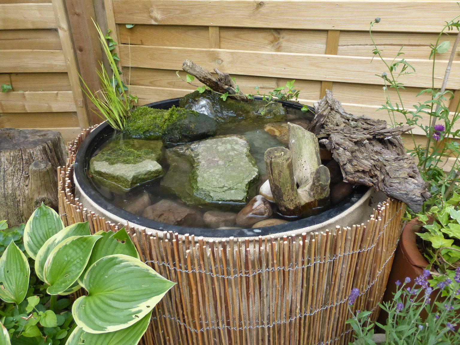 build your own wildlife water feature oasis www