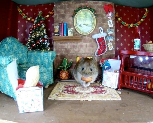 Christmas Vole1_00004