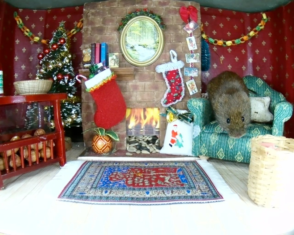 Christmas Mammal Box 2015_1_00004