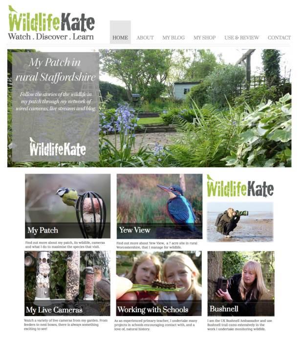 Blog Website page
