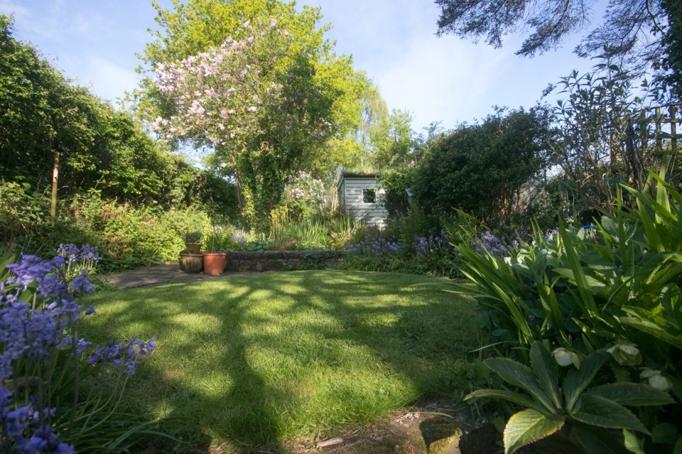 Garden May 2016 _-4987_lowRes18