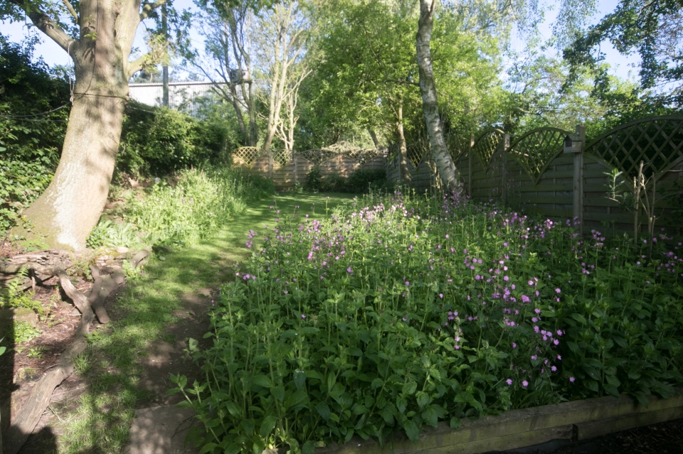 Garden May 2016 _-4995_lowRes22