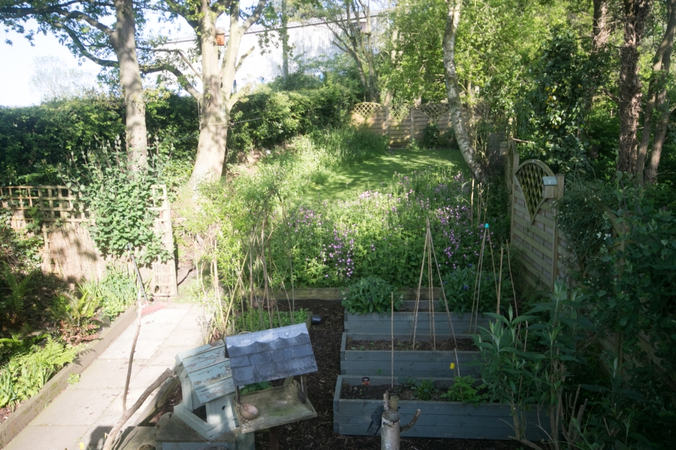 Garden May 2016 _-5004_lowRes25