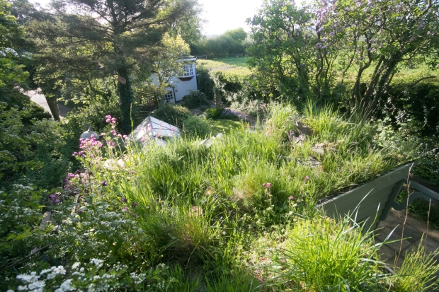 Garden May 2016 _-5009_lowRes28
