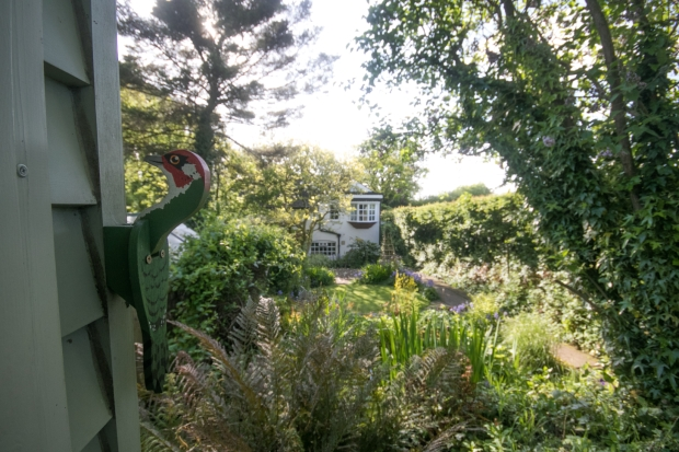 Garden May 2016 _-5021_lowRes31