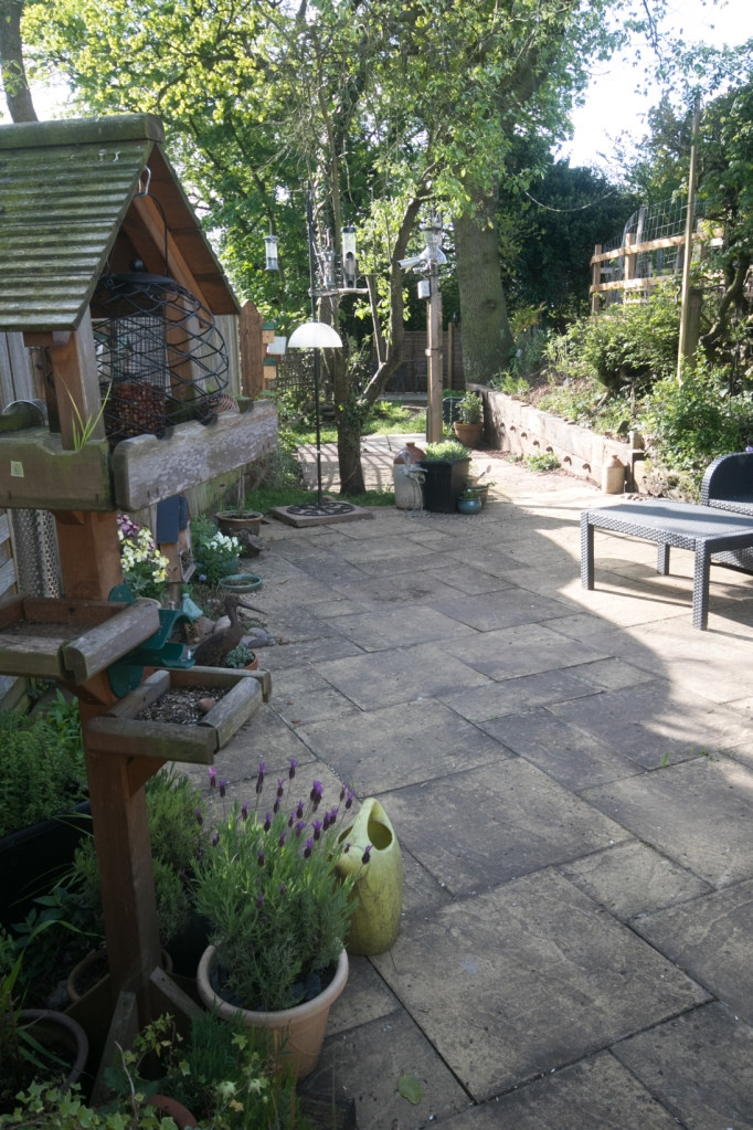 Garden May 2016 _-5030_lowRes34