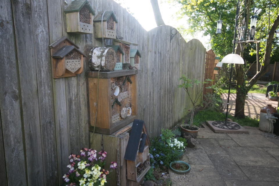 Garden May 2016 _-5031_lowRes35