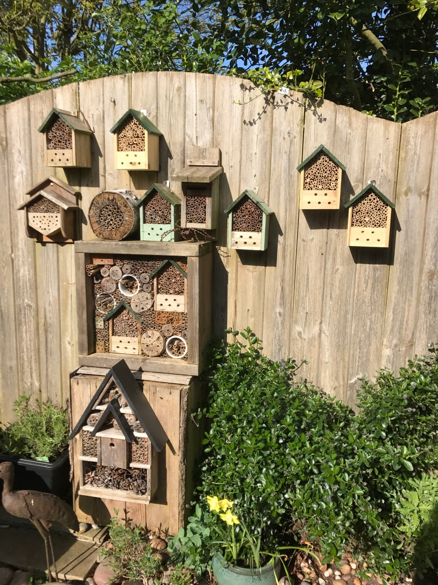 Get Going On Your Bee Hotels Www Wildlifekate Co Uk