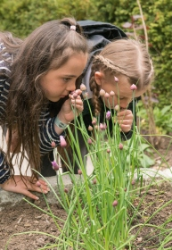 WWF Green Ambassadors from Wicor Primary school take the trail quiz in WWF-UK garden at the living Planet Centre, Woking, UK 3rd, May 2017.